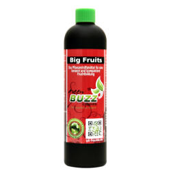 BUZZ Liquids Big Fruits Standard 250ml