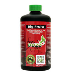 BUZZ Liquids Big Fruits Standard 500ml